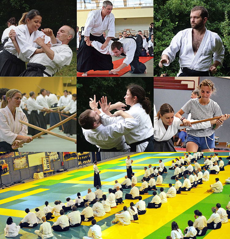 photo aikido traditionnel toulouse